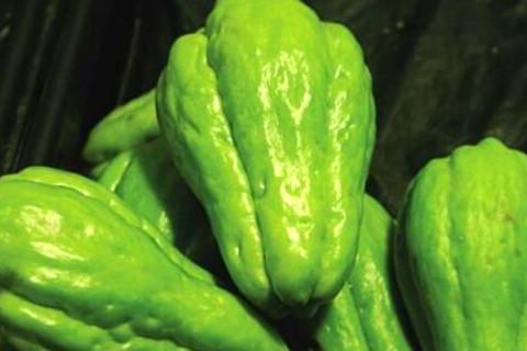 佛手瓜的功效与作用 吃佛手瓜的禁忌